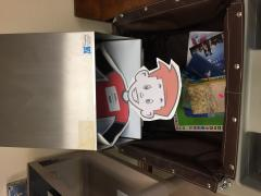 Flat Odie is in the bookdrop